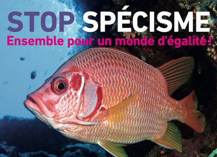 Stop Spécisme-poisson-5.jpg