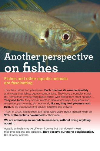 flyer_fish_front-r.jpg